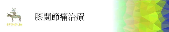 元住吉・武蔵小杉の膝関節痛治療